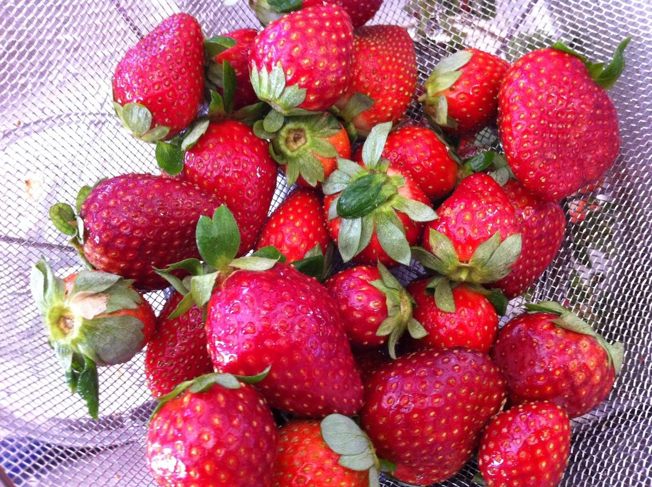 Perfect Strawberry Jam Recipes — Dishmaps