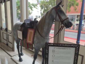 The Saddlery Horse